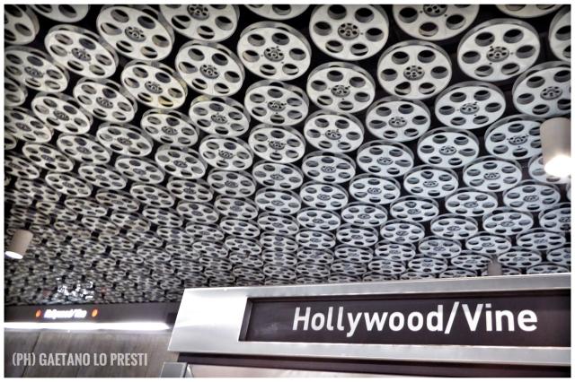 1 Hollywood Vine FullSizeRender